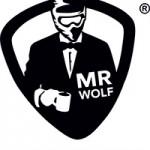 Logo Mr Wolf